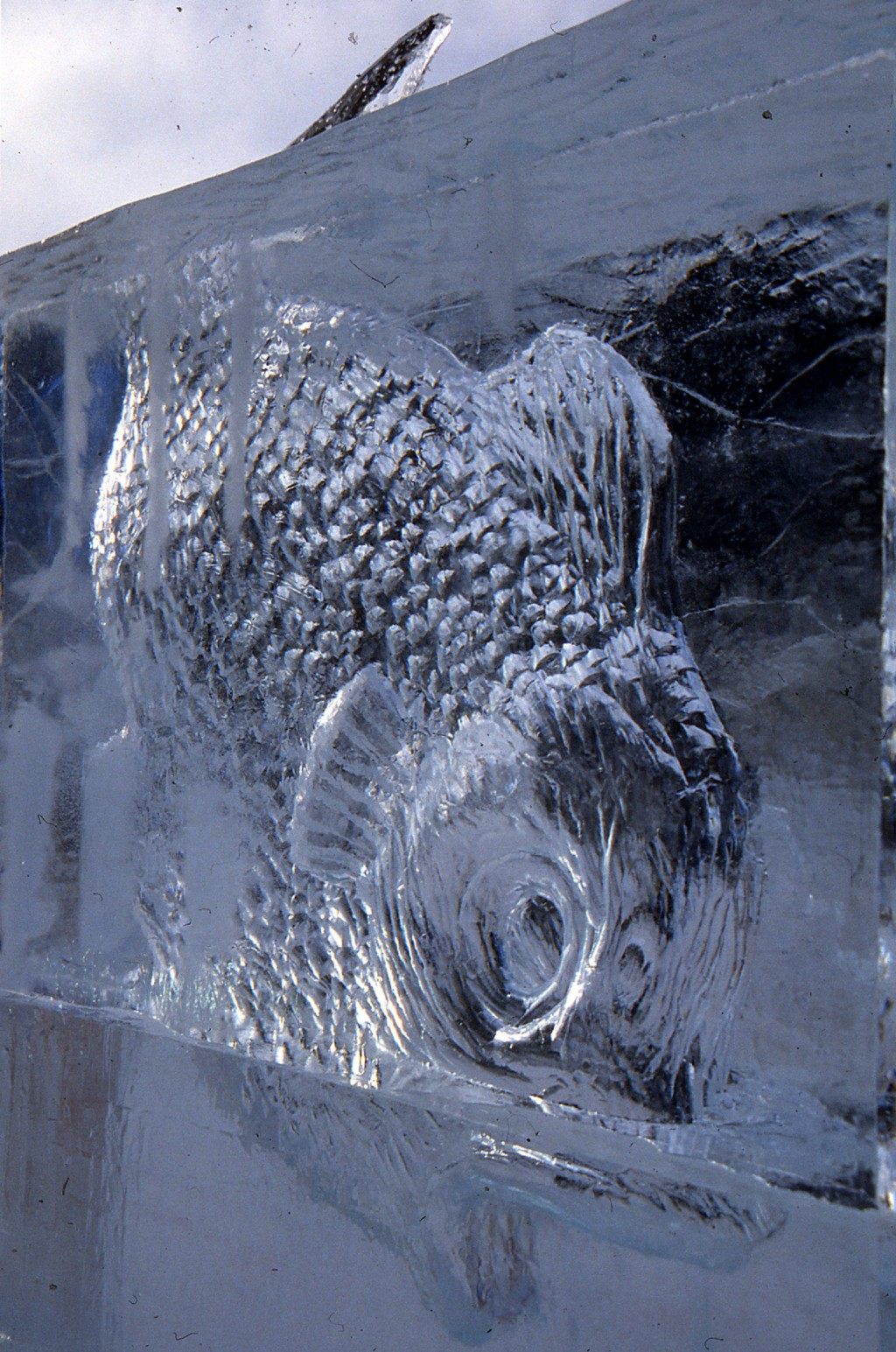 """""""vie en eau claire"""" sculpture en glace, ice sculpture"""