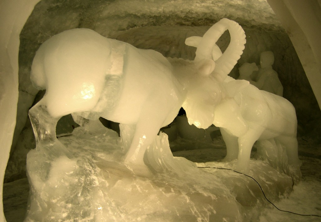 sculpture en glace représentant deux bouquetins grandeur nature.