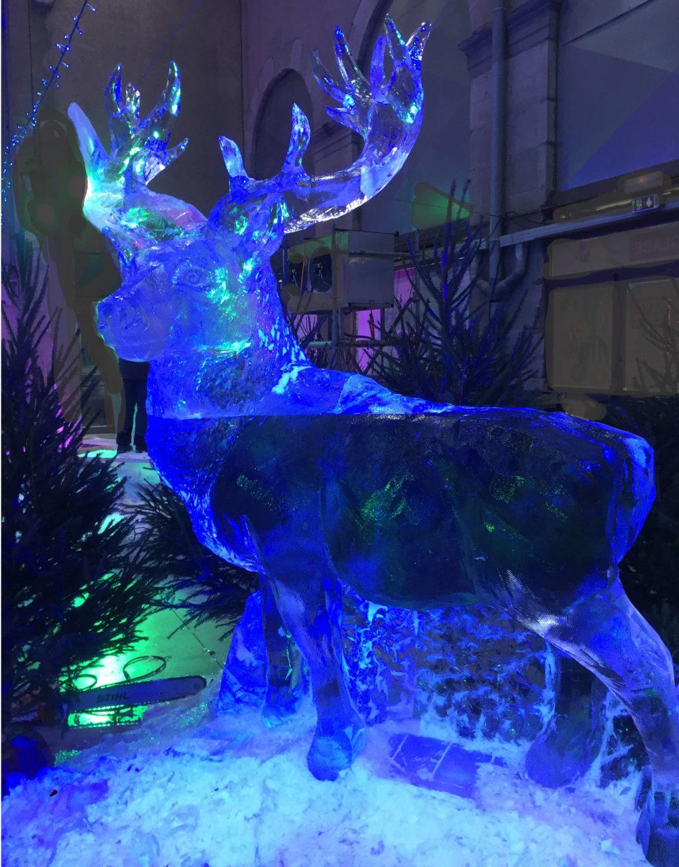 photo du Cerf sculpture sur glace, grandeur nature par Christian Burger