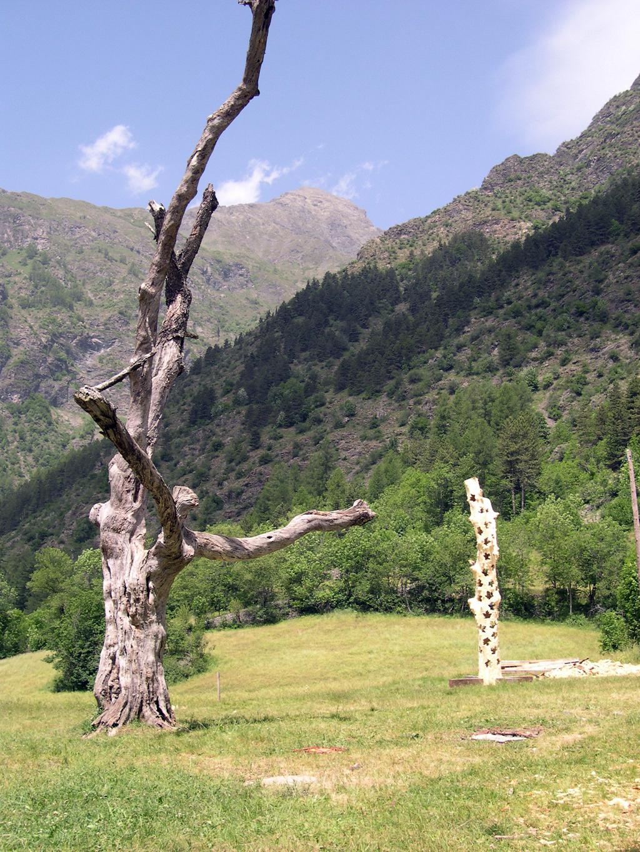 photo d'un pré avec en premier plan un bel arbre mort, mais debout et au deuxième plan la sculpture en bois